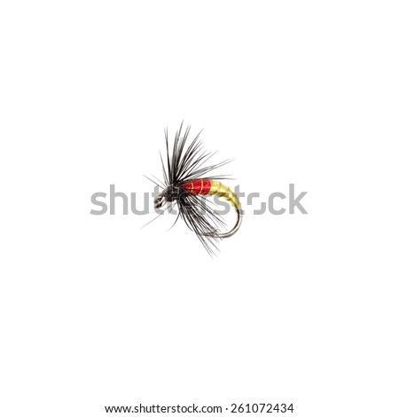 Fly fishing lure isolated on white background - stock photo