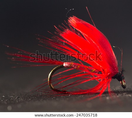 fly for fishing - stock photo