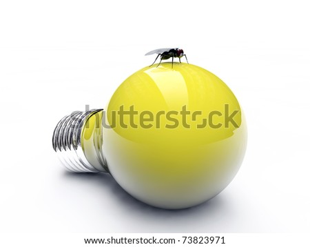 fly on a yellow bulb isolated on white background