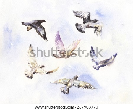 flying birds watercolor painting