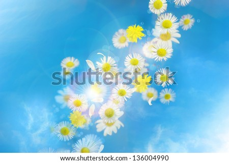 Flying flower buds and hexagonal bokeh decoration particles and also real bokeh, photographed with deep focus, over glass plates with halo circles, and like the bokeh with slight rainbow colors. - stock photo