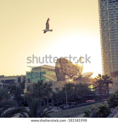 flying seagull near Port Olympic area in Barcelona, Spain - stock photo