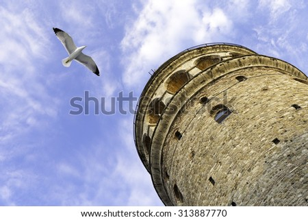 Flying seagull near the Galata Tower is a medieval stone tower in the Galata, Karakoy quarter of Istanbul, Turkey - stock photo