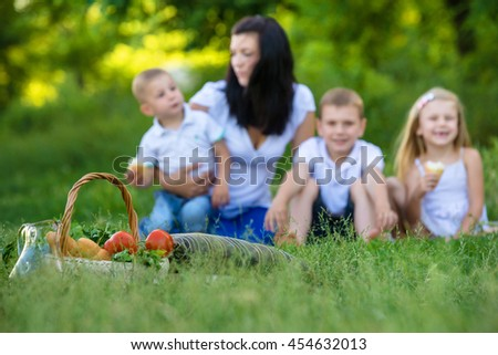 Focus on picnic basket. Blurred background