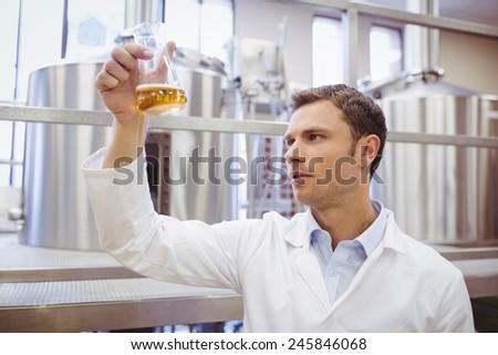 Focused scientist examining beaker with beer in the factory - stock photo