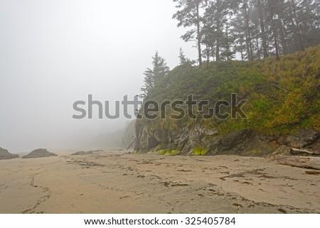 Fog and Mist on an Ocean Coastal Beach on the Oregon Coast near Charleston, Oregon - stock photo
