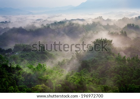 Fog covering a mountain covered in trees and plants. - stock photo