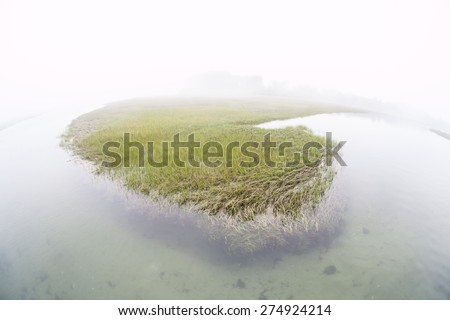 Fog covers a salt marsh in a shallow bay on outer Cape Cod, Massachusetts. Marshes are ecologically vital to the environmental health of this region. They are habitat for a wide diversity of life. - stock photo