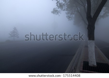 Fog highway - stock photo