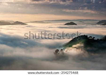 Fog in mountain before sunrise - stock photo