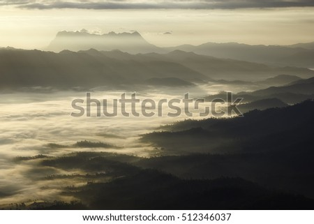 Fog in mountains. Fantasy and nature landscape. Nature conceptual image.