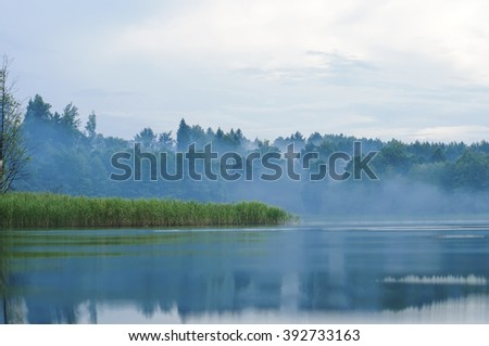 Fog in the morning on the shore of the forest lake