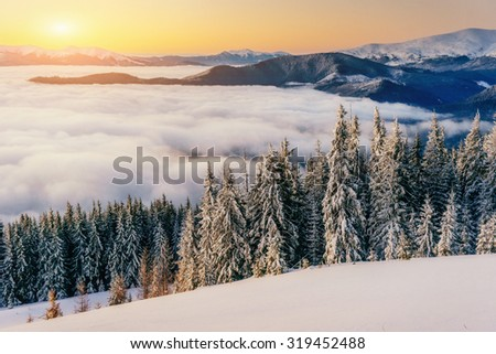 fog in winter mountains. Fantastic sunset