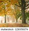 Fog on autumn road - stock photo