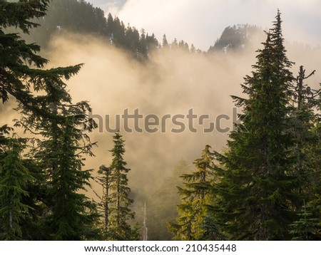 Fog on the top of Grouse Mountain at the end of the day. - stock photo