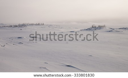 fog over a frozen lake in sweden - stock photo