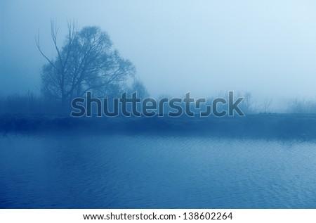 Fog over the lake, a tree ashore - stock photo