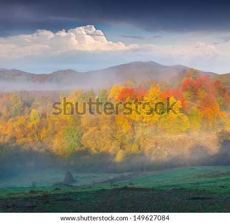 Foggy autumn landscape in the mountains - stock photo