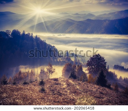 Foggy autumn morning in the mountains. Retro style. - stock photo
