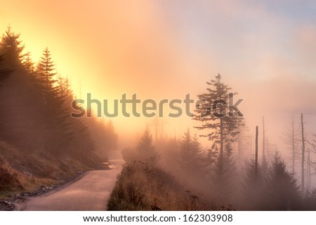 Foggy autumn sunrise from path leading to Clingmans Dome, Great Smoky Mountains National Park, Tennessee, USA - stock photo