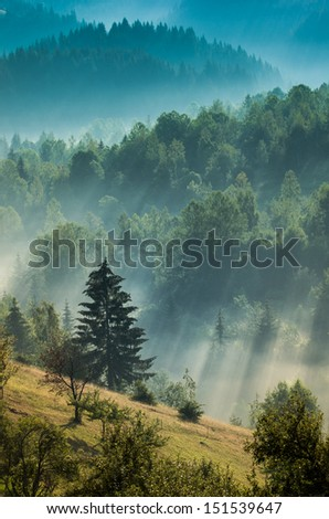Foggy dawn with sun rays on a valley