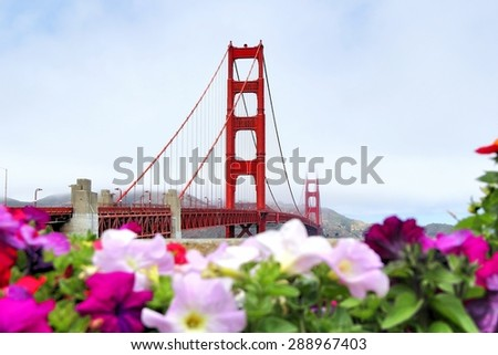 foggy day at golden gate bridge San Francisco california USA