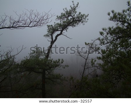 Foggy Day at Tater Knob - stock photo