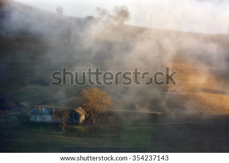 Foggy day in autumn on wild transylvania hills. Holbav. Romania. Low key, dark background, spot lighting, and rich Old Masters colors.