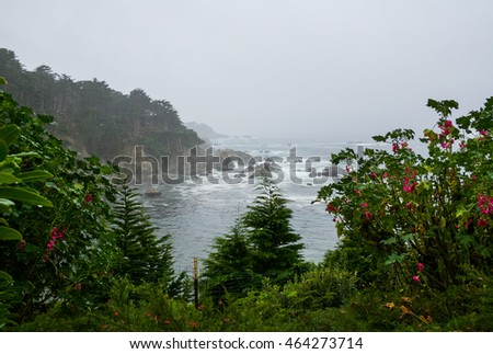 Foggy Day in Big Sur, California