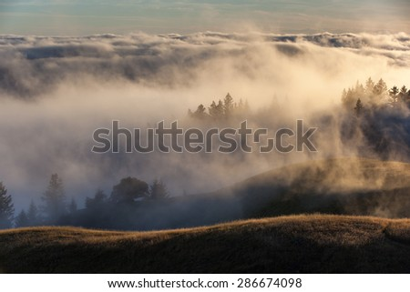 Foggy hills in Marin county, California - stock photo