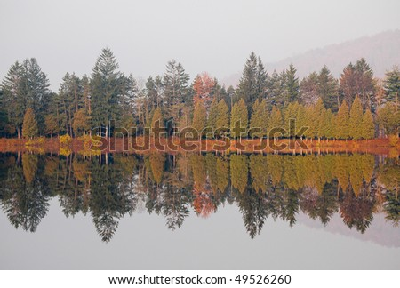 foggy lake and forest - stock photo