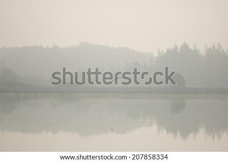 Foggy morning at a calm lake - stock photo