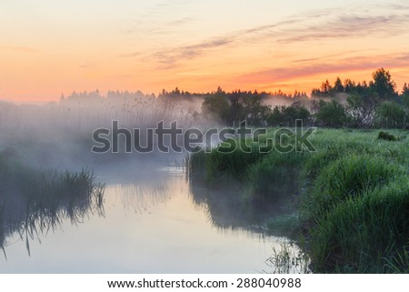 Foggy morning at the river. Sunrise at the river. Trees in fog on the river bank in the morning. The rays of dawn sunlight illuminate the clearing with wildflowers and grass.