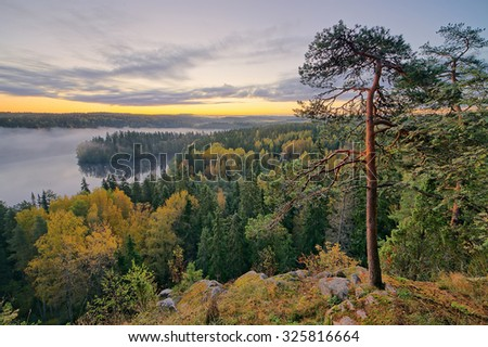 Foggy morning in the Aulanko nature reserve park in Finland. The sun is about to rise in the early morning. HDR image. - stock photo
