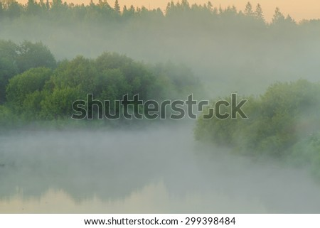 Foggy morning on the river. Bushes stick out of fog. Sunrise at the river. Misty trees - stock photo