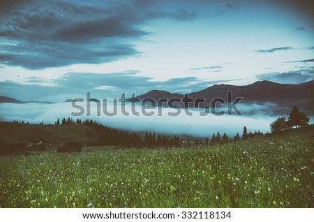 Foggy morning vintage shiny summer landscape with mist and green meadow