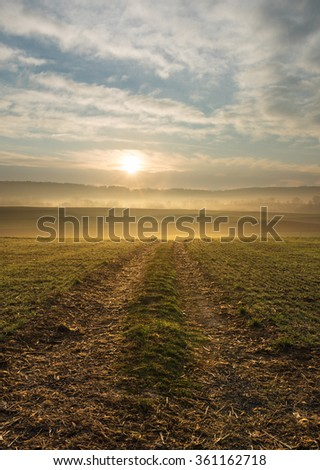 Foggy Morning with Path Towards Sunrise - stock photo
