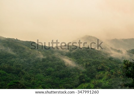foggy mountain hills with lush vegetation - stock photo