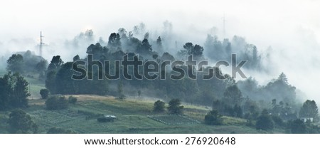 foggy night landscape  - stock photo
