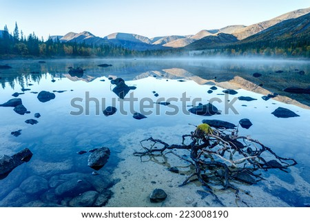 Foggy Polygonal freshwater lake with rocks and dead willow octopus-like trunk in the foreground in Hibiny mountains in the early morning before sunrise - stock photo