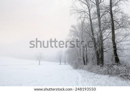 Foggy Sky Glowing at Sunrise on Snowy Day - stock photo