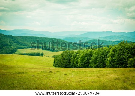 Foggy summer morning in the mountains. Carpathian, Ukraine, Europe. Beauty world