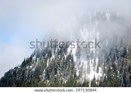 Foggy Summit at Mount Rainier National Park - stock photo