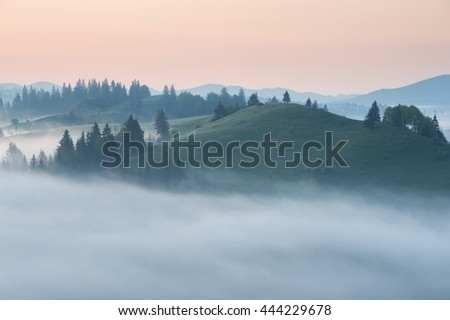 Foggy sunrise with forest and mountain silhouettes. Warm summer nature background. Captured near one of the village in Carpathian mountains, Ukraine.