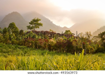 Foggy sunset landscapes surrounding the small village of coffee growers in the highlands of Honduras. Santa Barbara National Park