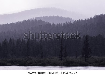 Foggy treeline along the coast of the Swiftcurrent Lake as viewed from the Many Glacier Hotel in Glacier National Park, Montana - stock photo