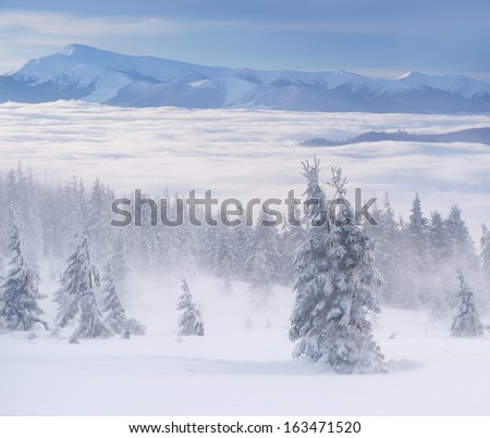 Foggy winter landscape in the mountains - stock photo