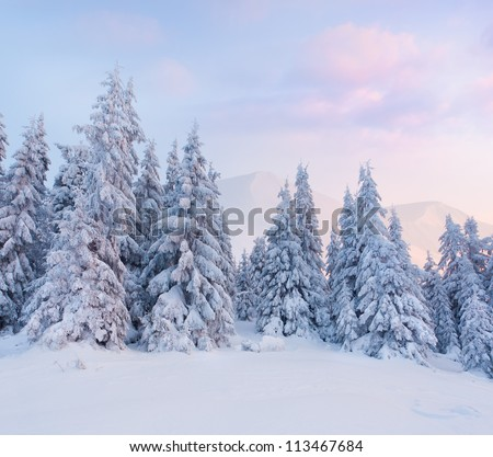 Foggy winter landscape in the mountains. Sunrise - stock photo