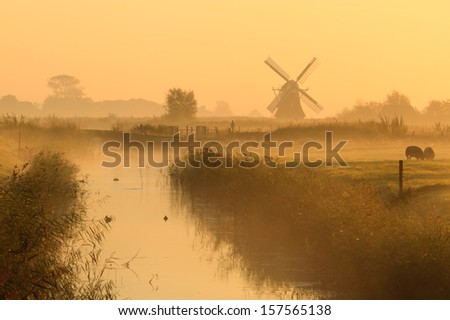 foggy, yellow morning in a typical Dutch landscape with a traditional windmill. - stock photo