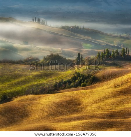 Fogy morning on the hill in Tuscany - stock photo